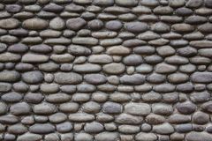Texture of the wall made from pebble Royalty Free Stock Image