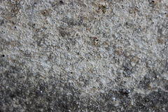 Texture. Wall texture with sand Stock Image