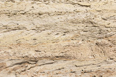 The texture of a wall of sand on the beach Royalty Free Stock Image