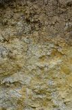 Texture of a wall of solid yellow and brown sand in a sandy quarr. Y Stock Image
