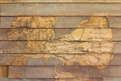 Texture wall wood termites Royalty Free Stock Images