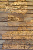 Texture wall wood termites Stock Photo