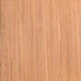 Texture walnut Stock Image