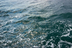 Texture of water. Black Sea, Ukraine Stock Images