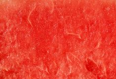 Texture of water melon Royalty Free Stock Photography