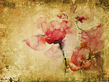 Texture with watercolor roses Stock Photography