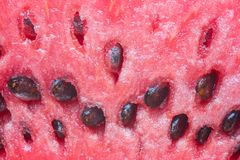 Texture of watermelon Royalty Free Stock Photos