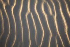 Texture of waves on sand Royalty Free Stock Photography