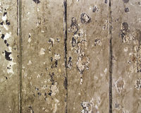 Texture of weathered wooden Stock Images