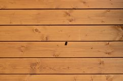The texture of weathered wooden wall. Aged wooden plank fence of horizontal flat boards with small bee sitting on the. M royalty free stock image