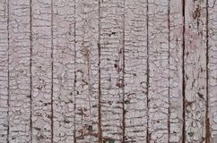 The texture of weathered wooden wall. Aged wooden plank fence of vertical flat board. S Stock Photos