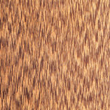 Texture of  wenge tree, wood grain Royalty Free Stock Image