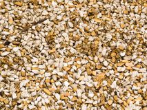Wet floor, small pebbles, white and light brown. Texture of wet floor after rain, small pebbles, white and light brown, seen close up Stock Images