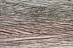 Texture of wet old wood. Royalty Free Stock Images