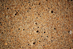 Texture of wet sand Stock Image