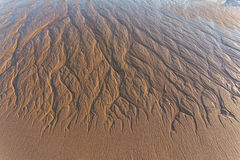 Texture of wet sand after a wave. Stock Image