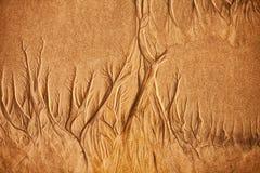 Texture of wet sea sand Stock Image