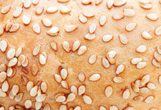 Texture of white bread Royalty Free Stock Image