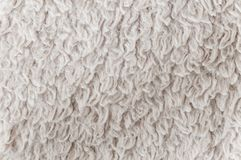 Texture of a white carpet Royalty Free Stock Images
