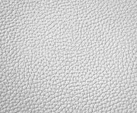 Texture of white leather Royalty Free Stock Image