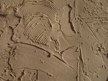 Texture of white plaster. On the wall Stock Photography