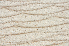Texture of white sandstone Stock Images