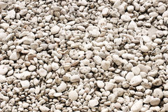 Texture of white stones Royalty Free Stock Photo