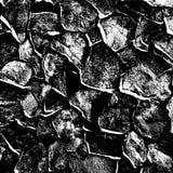 Texture Wild Stone Stock Photography