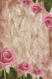 Texture With Roses Stock Images