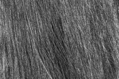 The texture of women's hair. Texture womens dark straight hair royalty free stock photos