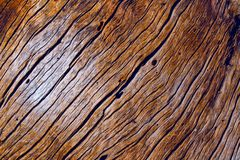 Texture of wood. Fragment of old cracked wooden beehive royalty free stock image