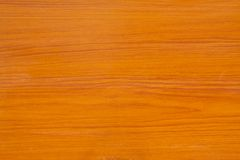 Texture wood. Nuture texture,background Stock Photography