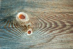 Texture of wood. Texture of fir wood core Stock Photography