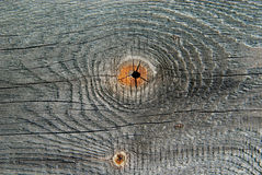 Texture of wood. Texture of fir wood core Royalty Free Stock Photos