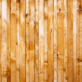 Texture of wood Stock Photography