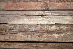 Texture of the wood Stock Image