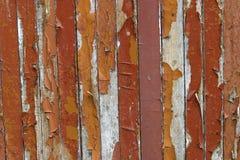 texture wood 免版税库存图片