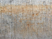 Texture on the wood Stock Image