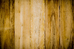 Texture of wood background closeup Stock Images