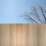 Texture of wood background. For the design Stock Image