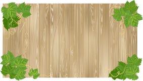 Texture of wood. Stock Photos