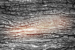 Texture of wood charcoal Royalty Free Stock Photo