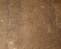 Texture of wood chipboard. Natural brown Royalty Free Stock Photography