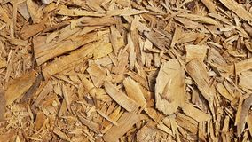 Texture of wood chips Royalty Free Stock Images