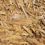 Texture of wood chips Royalty Free Stock Image