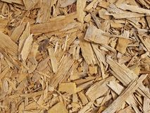 Texture of wood chips Stock Photos