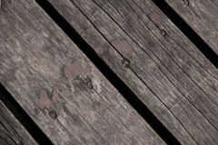 Texture of wood. Stock Image