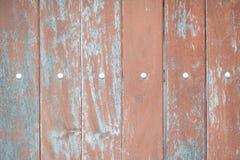 Texture wood door Stock Photos
