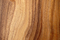 Texture of wood. Texture of wood for furniture making Royalty Free Stock Photo