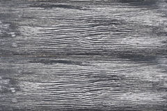 Texture of wood Royalty Free Stock Photo